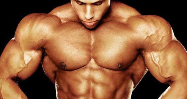 Muscle Mass Using Dianabol